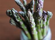 Les asperges : verdoyantes, vibrantes et polyvalentes