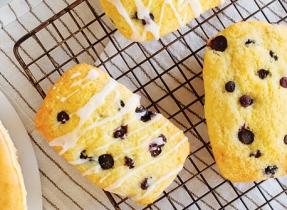Mini pains au citron et aux bleuets